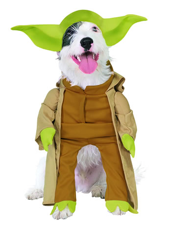 10 Super Cute Dog Costumes for Halloween